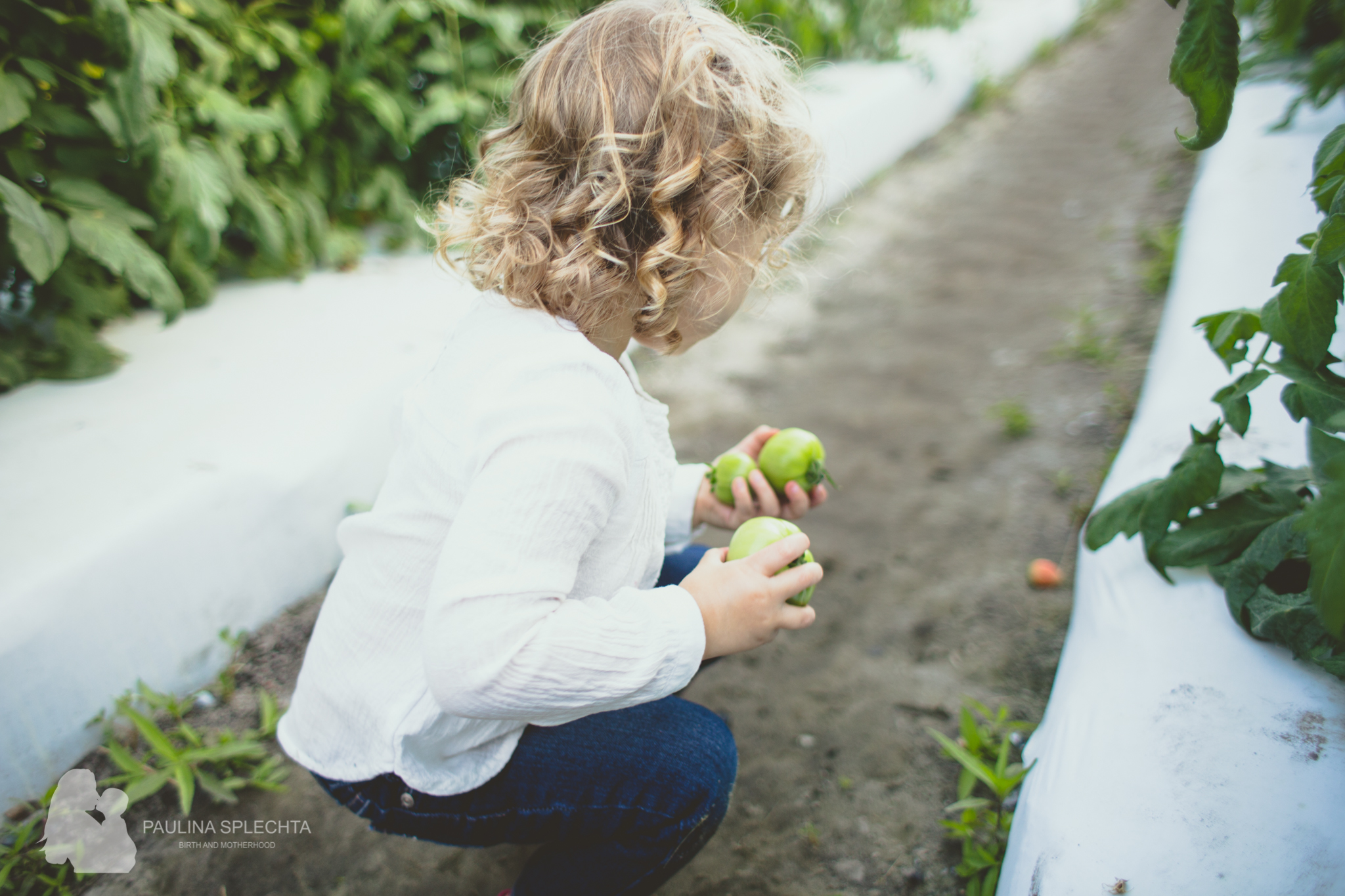 Farm Photo Shoot Strawberry Patch Family Florida-9.jpg