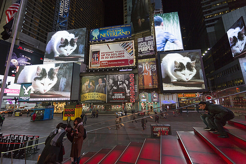 the-welcome-blog-sightseeing-new-york-midnight-moment