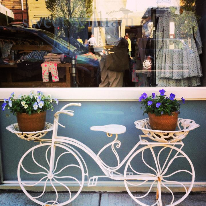 You can find plenty of cool, trendy, charming stores in Williamsburg