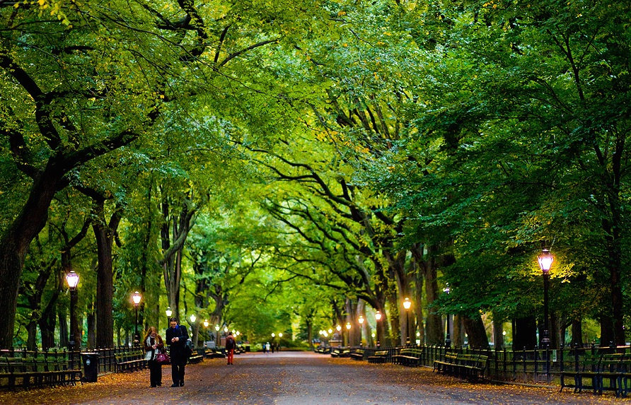 central-park-the-welcome-blot