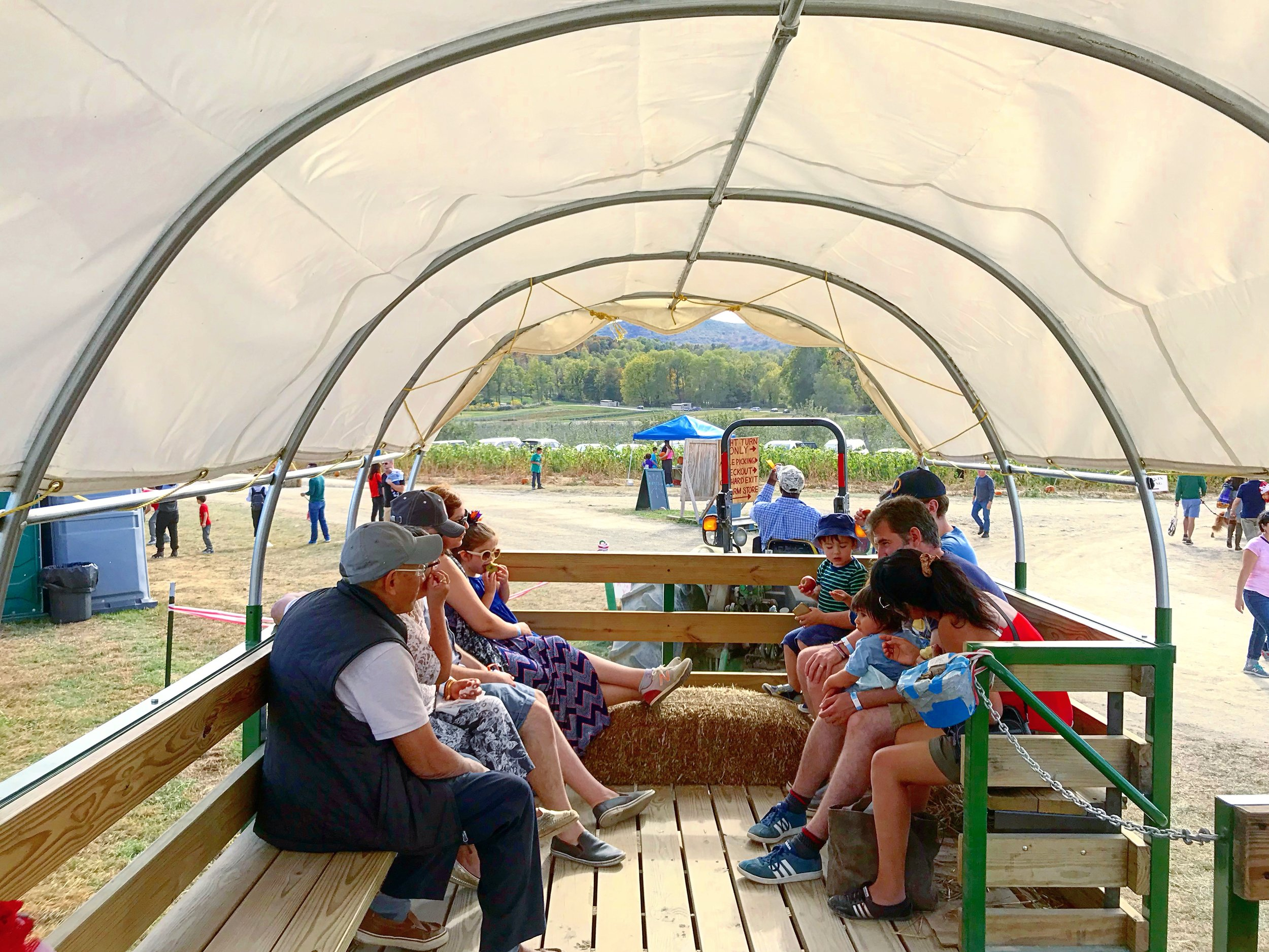 The Hayride is free and goes around the entire Farm.