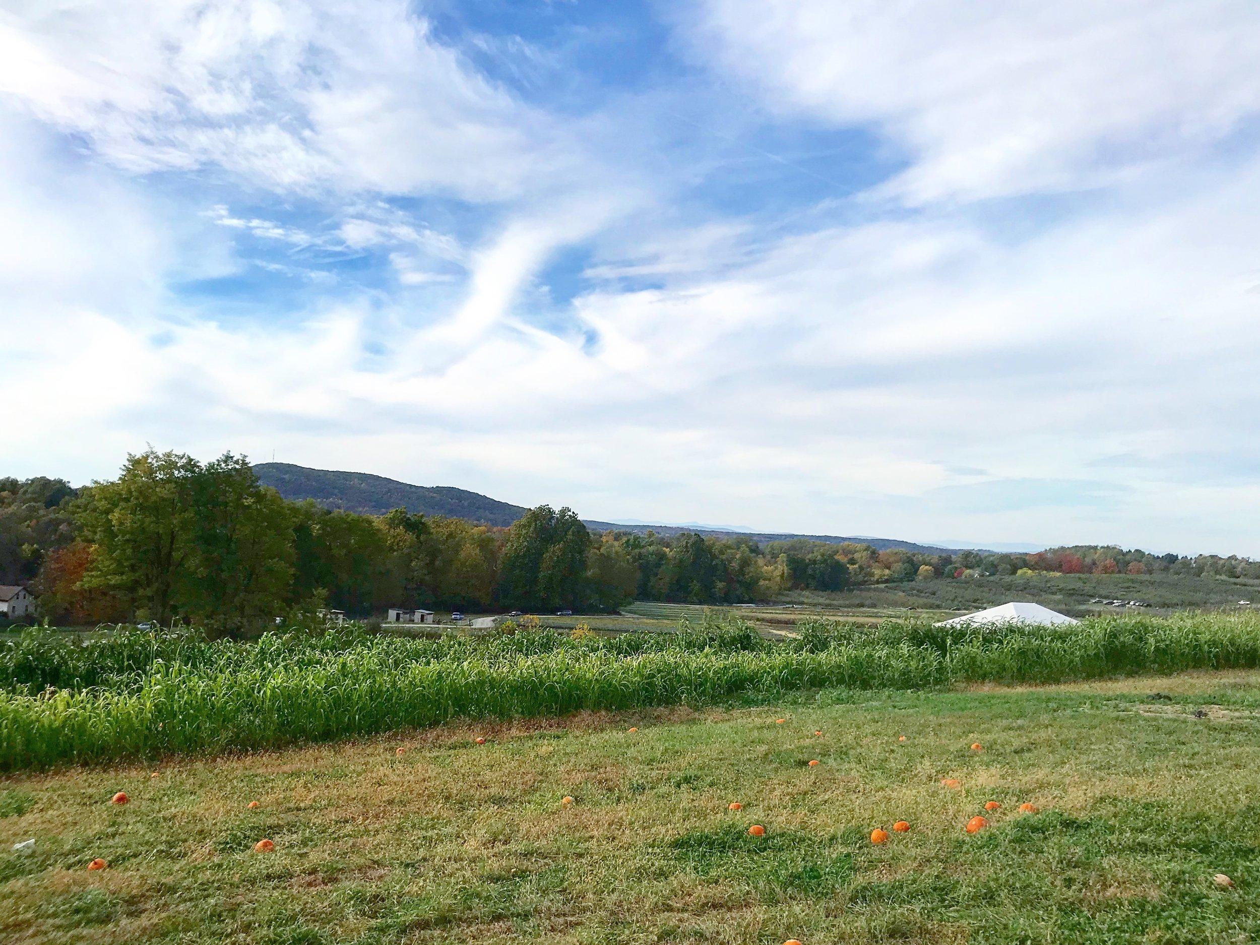 The Grounds, Fishkill Farms NY
