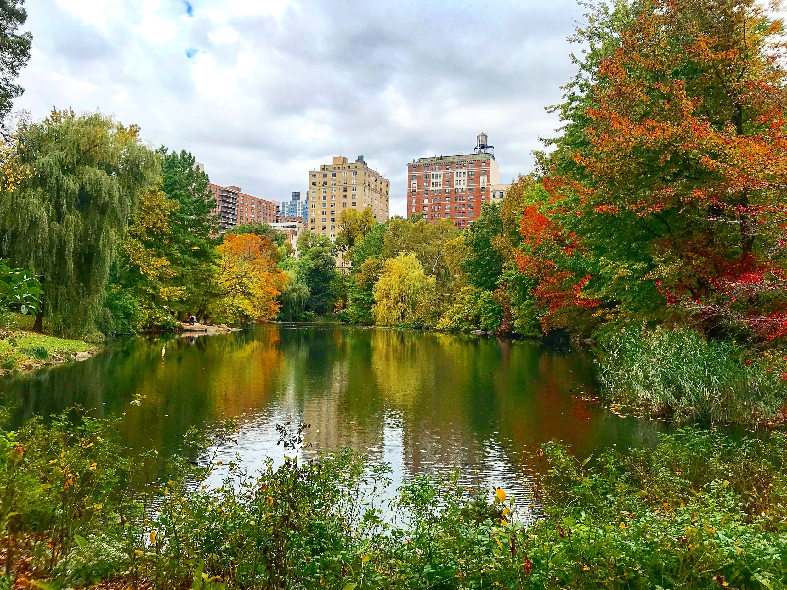 Central Park - The Pool, 100th Street on the West Side - October 26th 2017
