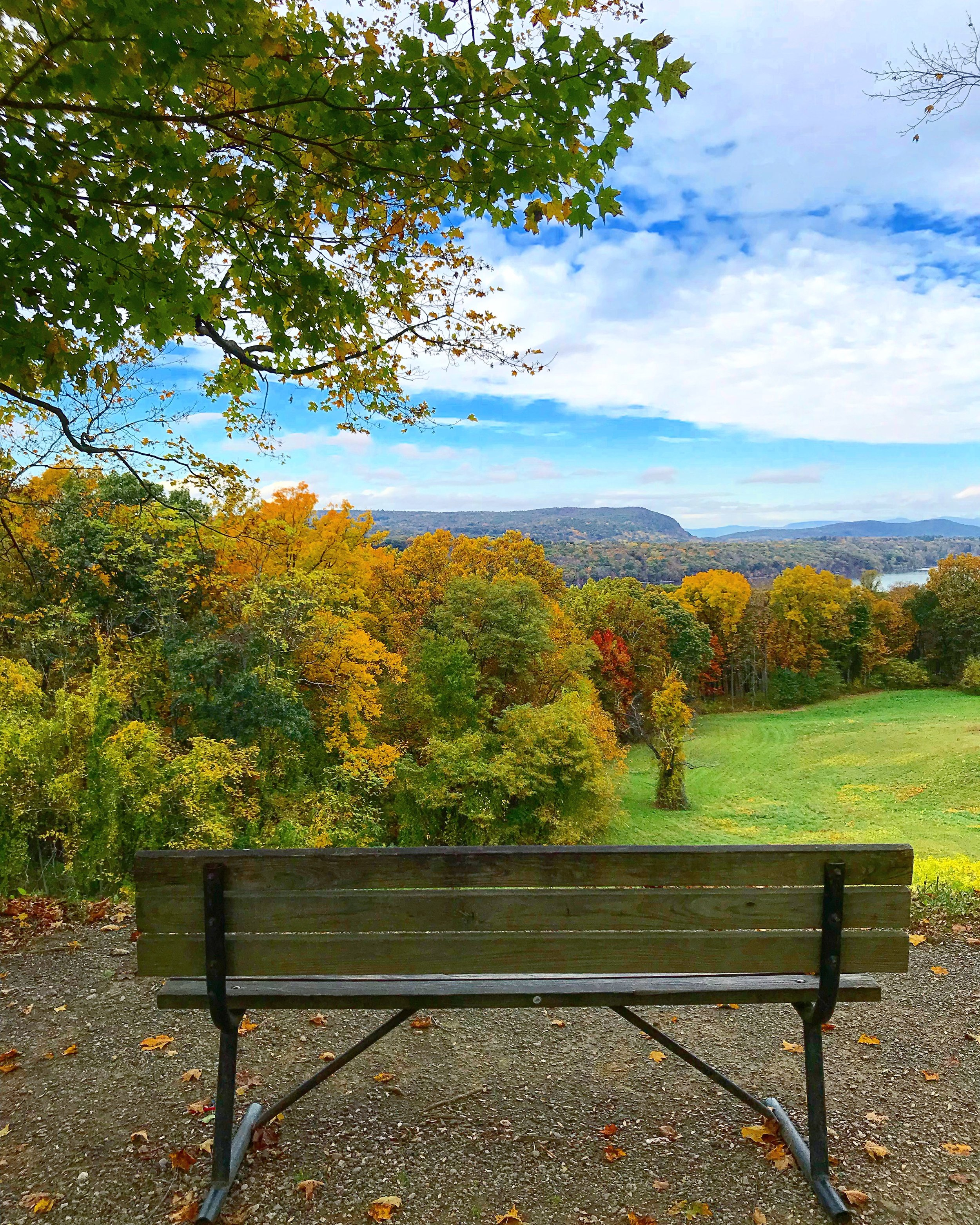Vanderbilt Mansion Park, Bench with a view, Hyde Park, NY - October 25th 2017.