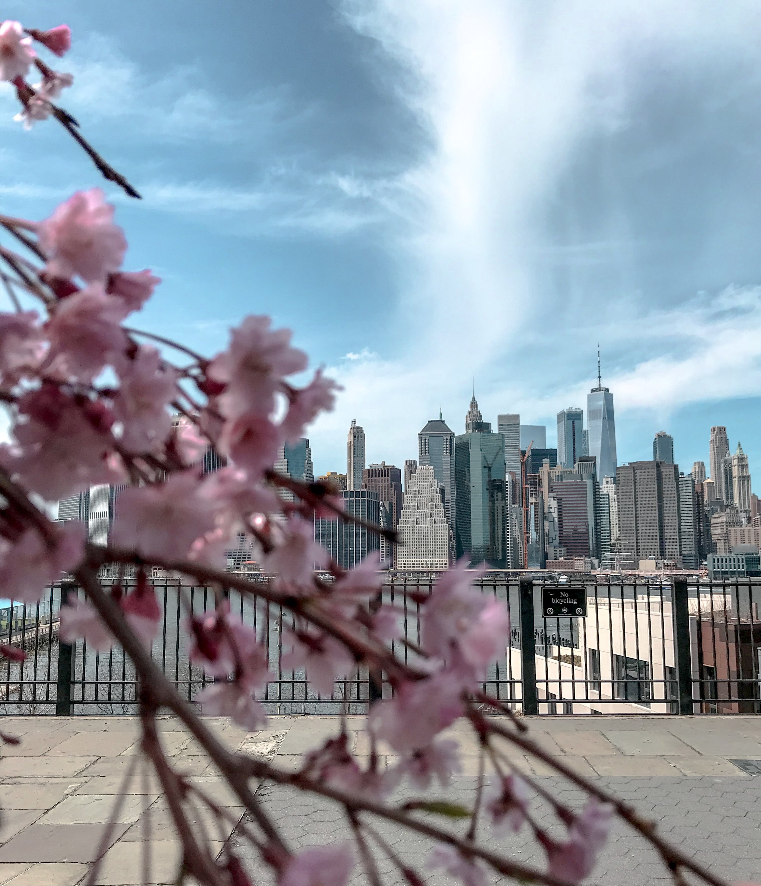The Brooklyn Promenade