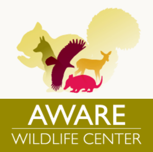 aware-wildlife-center.png