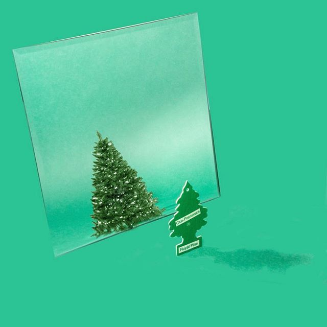 My goal for 2019 is to be as confident as my Christmas tree 🎄 😂 ❤️ • • • • #abmlifeiscolorful#candyminimal #creativityfound#designspiration #dscolor #livecolorfully#livingpastel #myunicornlife#thehappynow #instaart #instagood#thatsdarling #thenativecreative #calledtobecreative#pursuepretty #petitejoys #lovelysquares #huffpostgram #buzzfeed #beauty #christmastree #christmas #goals