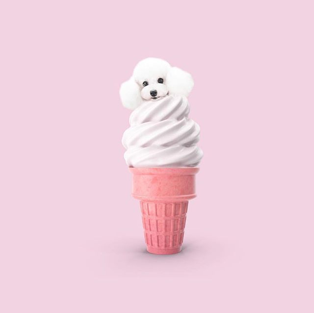 A lil something to help ease your Sundae scaries 🐶💕🍦•• • • • #abmlifeiscolorful#candyminimal #creativityfound#designspiration #dscolor #livecolorfully#livingpastel #myunicornlife#thehappynow #instaart #instagood#thatsdarling #thenativecreative #calledtobecreative#pursuepretty #petitejoys #lovelysquares #huffpostgram #buzzfeed #foodie #sundayscaries #icecream