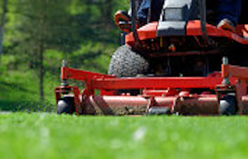 Lawn Maintenance - Full lawn care service includes but is not limited to:Mowing of the front and backyard, Weedeating around trees fences and beds. Cleaning work area of grass clipping etc.
