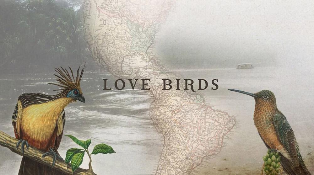LoveBirds_1000px.jpg