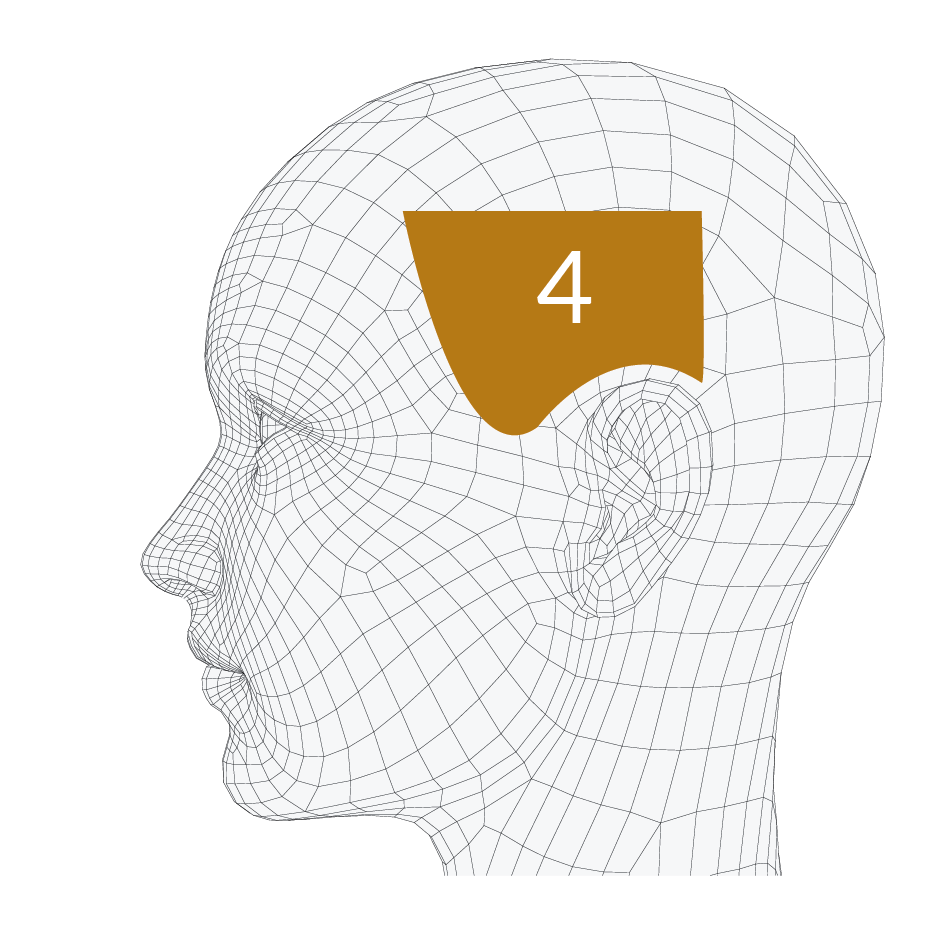 head-forms-04.png