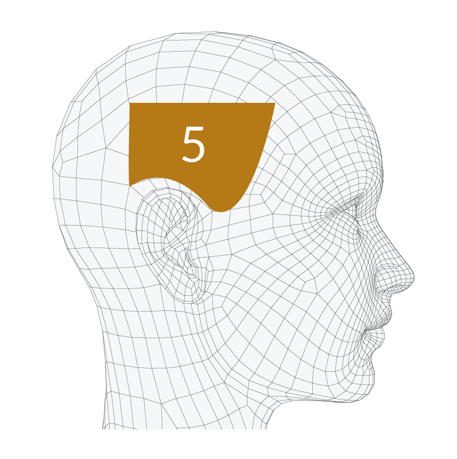 head-forms-05.png