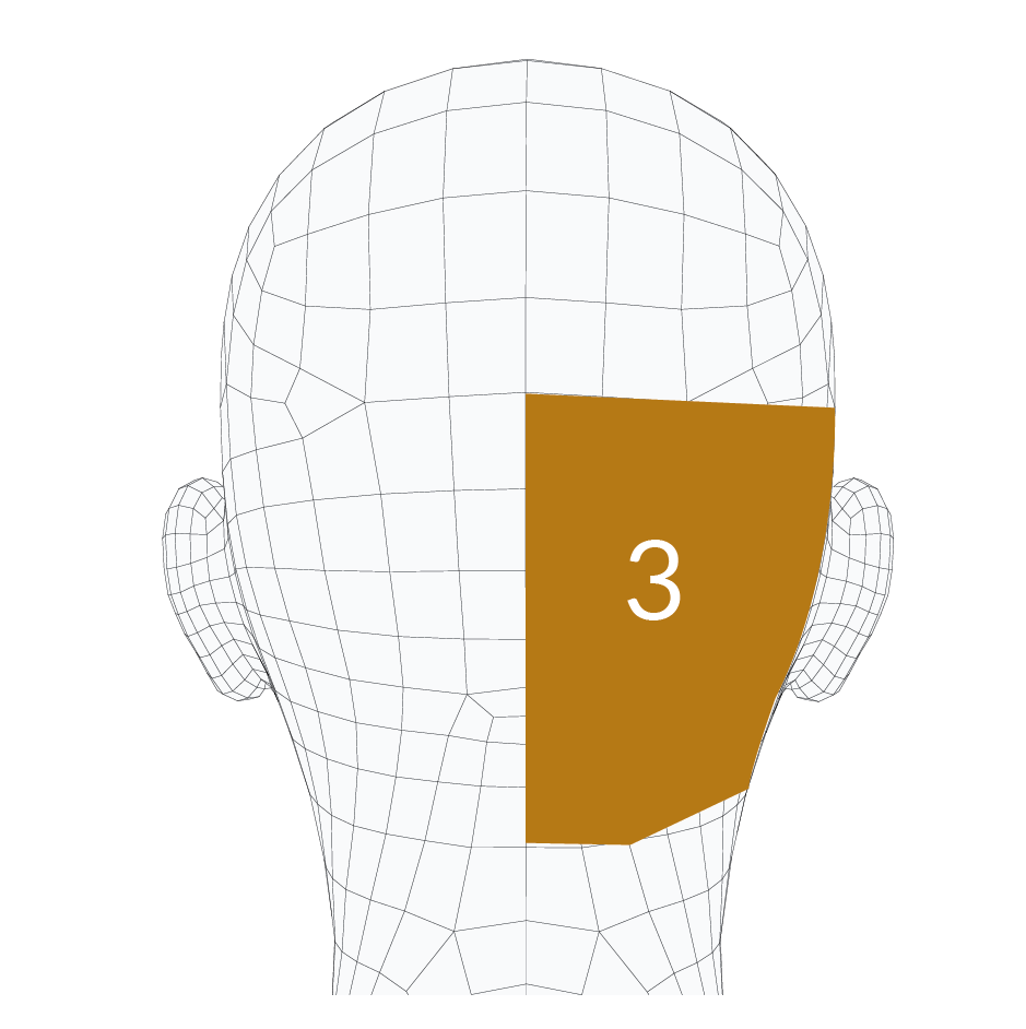 head-forms-03.png