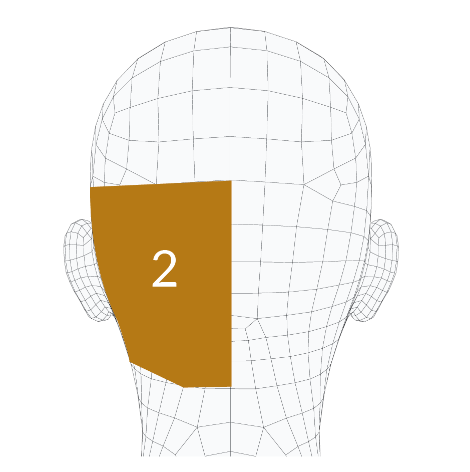 head-forms-02.png