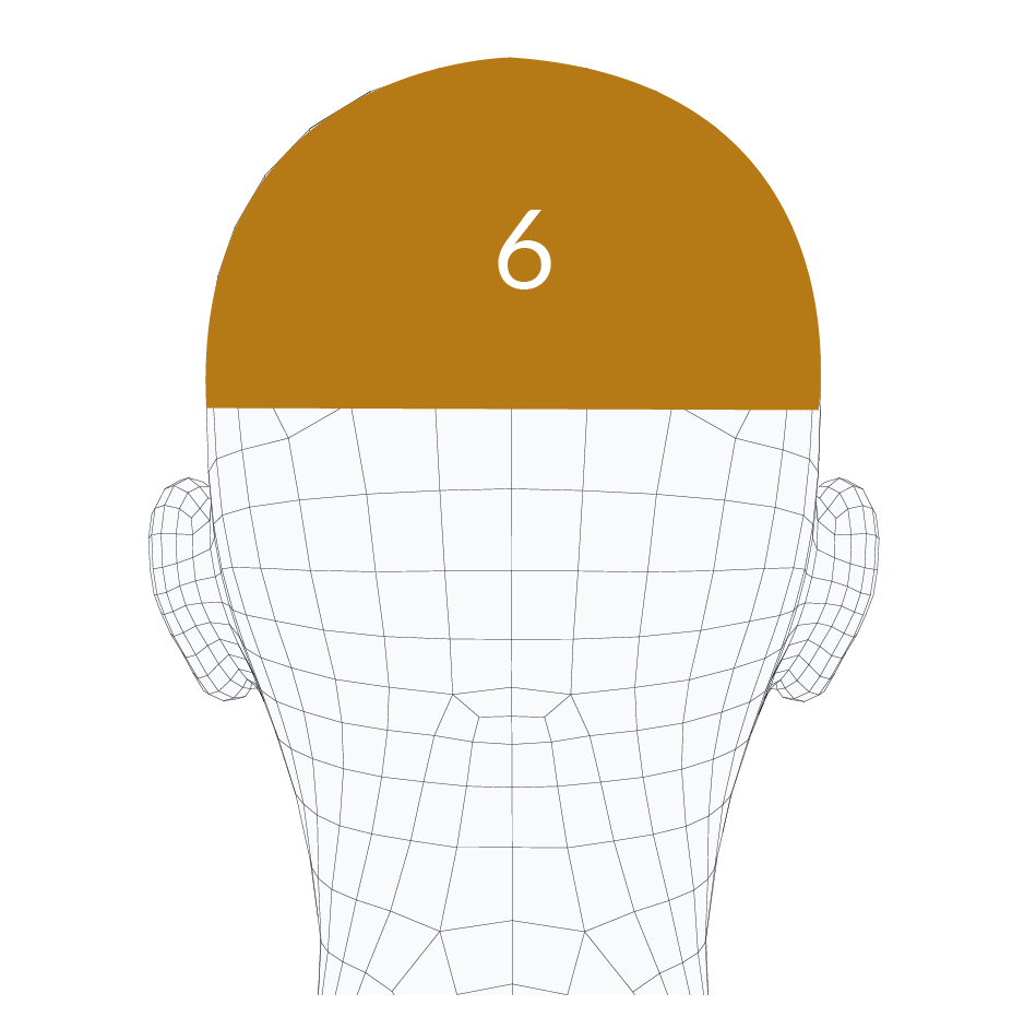 head-forms-06.png