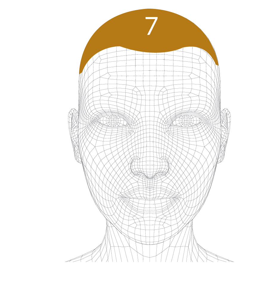 head-forms-07.png