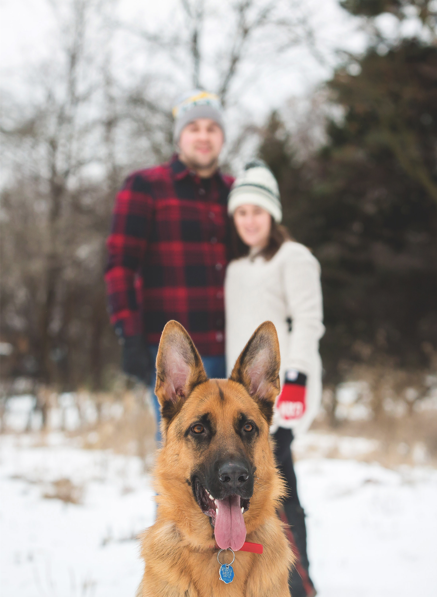 Engagement-Photos-Hamilton-Niagara-Toronto-Burlington-Oakville-Photographer-Engaged-Ring-Photography-Dog-Winter-Moments-by-Lauren-Image-11.png
