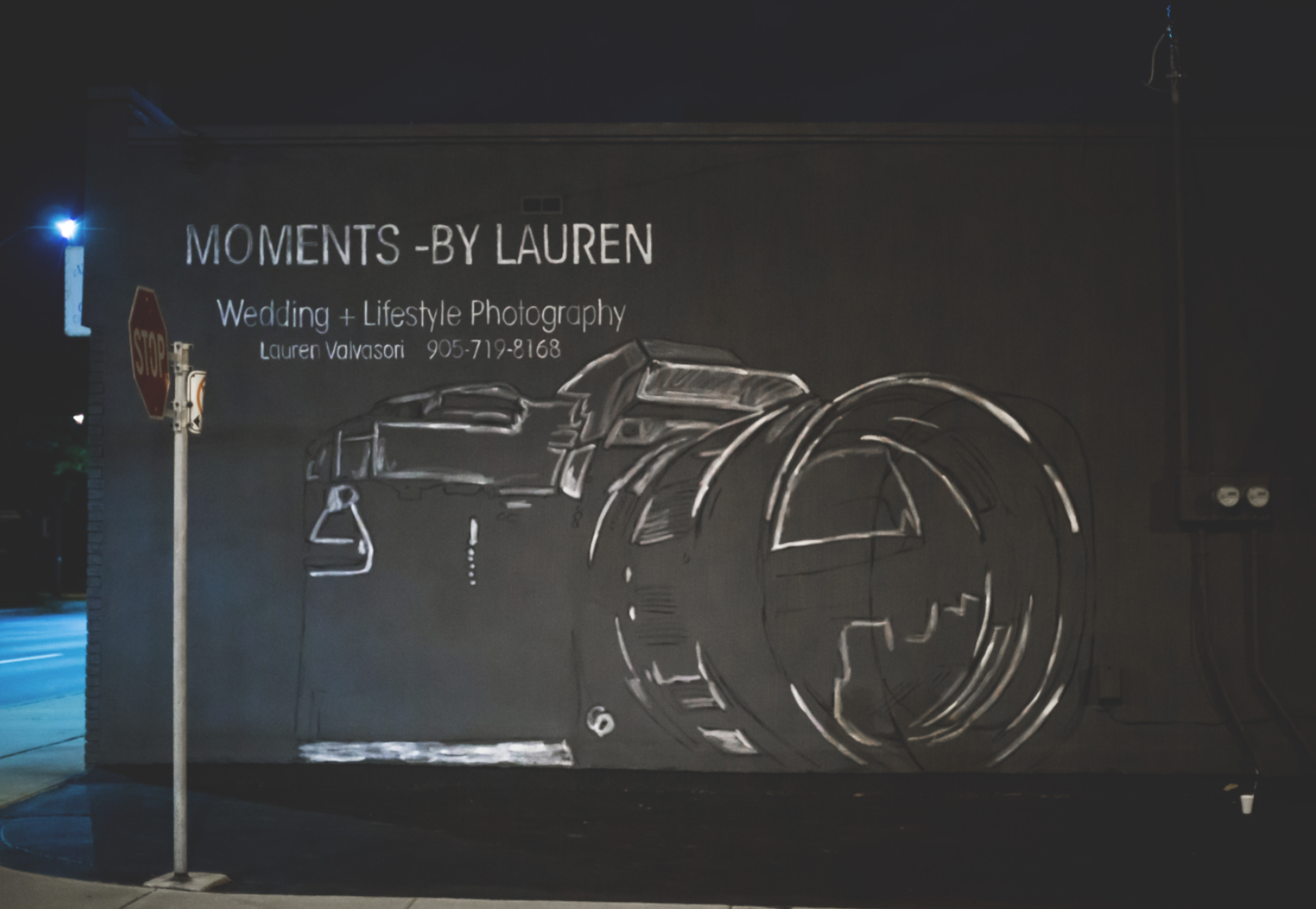 Moments-by-Lauren-Camera-Mural-Claire-Hall-Design-Photo-4.png