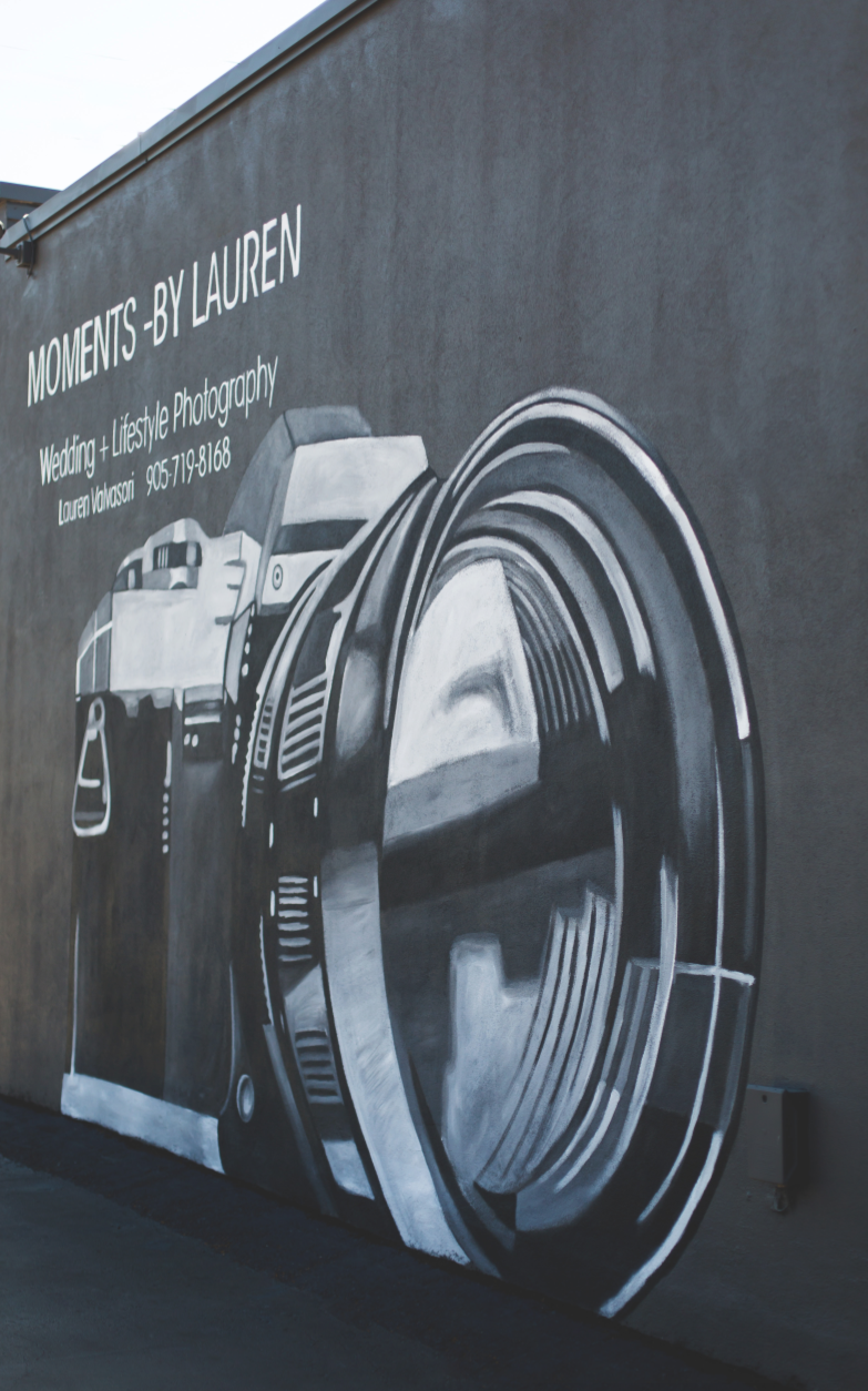 Moments-by-Lauren-Camera-Mural-Claire-Hall-Design-Photo-8-1.png