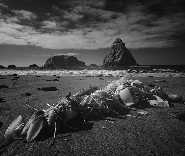 Oregon Coast.  Sony A7 with 16-35 converted to IR by @kolarivision . . . . .  #sonyalpha  #Valvicphoto #bnwmood#bnw_globe#monochrome#rsa_bnw#blackandwhitephoto#bnw_city#blackandwhitephotography#bnw_rose#bnw_captures#bnw_magazine#bnw_life#blackandwhiteisworththefight#bnw_society#bw_divine#bw_lover#superstarz_bw#blancoynegro#bnw_kings#bw_photooftheday#edits_bnw#bnw_planet#ig_energy_bw#bnw_demand#bnw_sniper #sonyphotogallery #sonyalphasclub #sonyimages