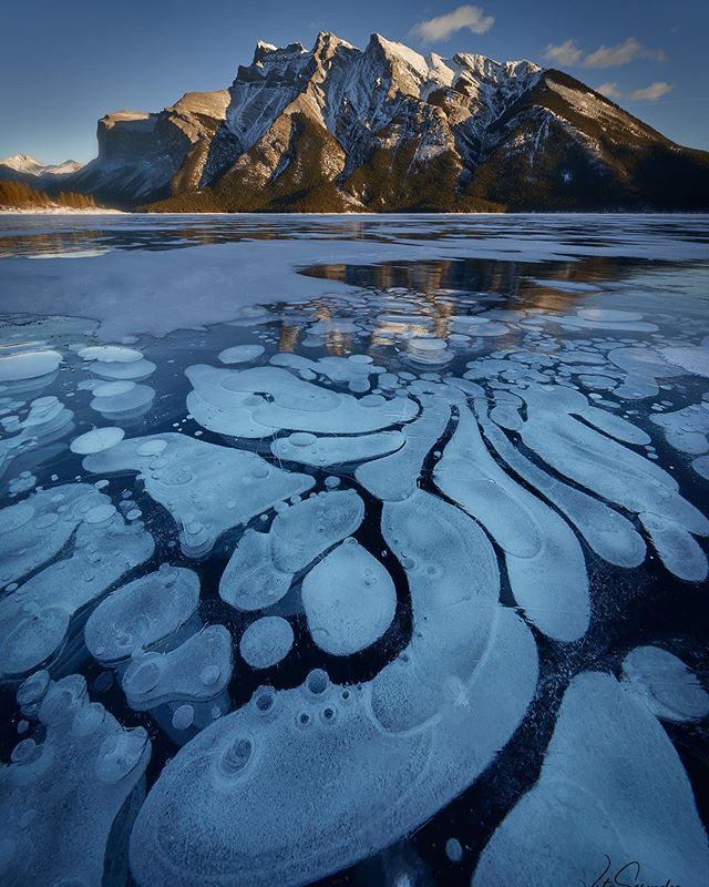 Missing the cold weather up in Banff and of course Ice Bubbles !  #icebubbles #banffnationalpark #banff #banffalberta #alberta #landscape_capture