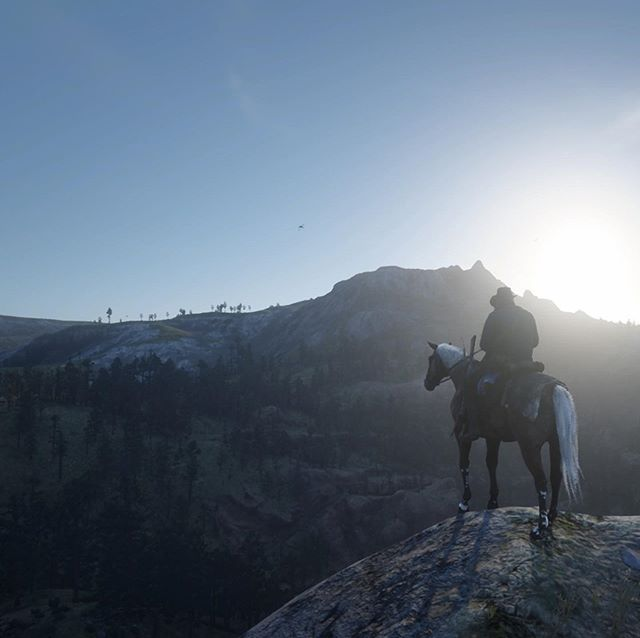 Hyped for Red Dead Redemption 2 on PC later this year.  #reddeadredemption2 #rockstargames #pcgaming