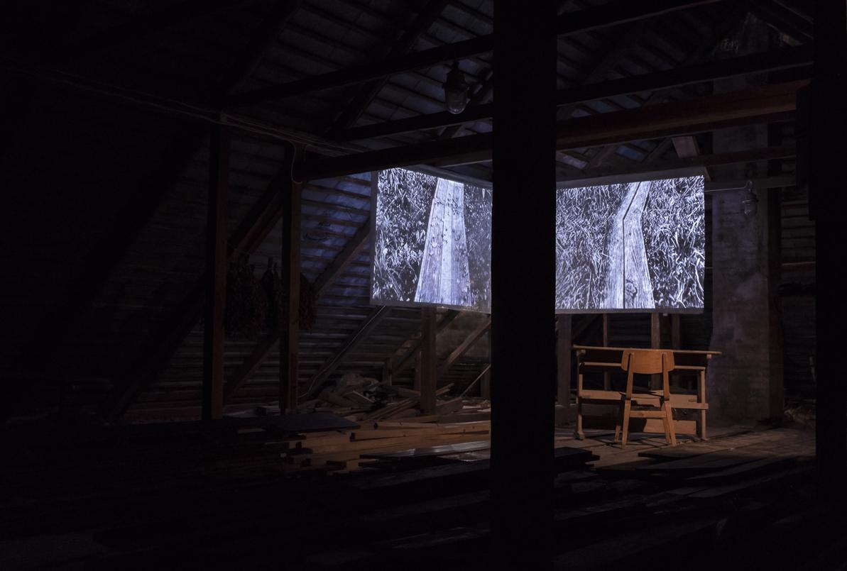 Video Installation, 2018