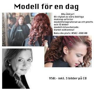 modell1 F MEN BYT!.jpg