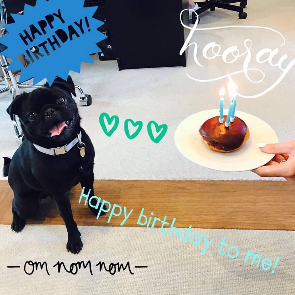 Pircy Birthday