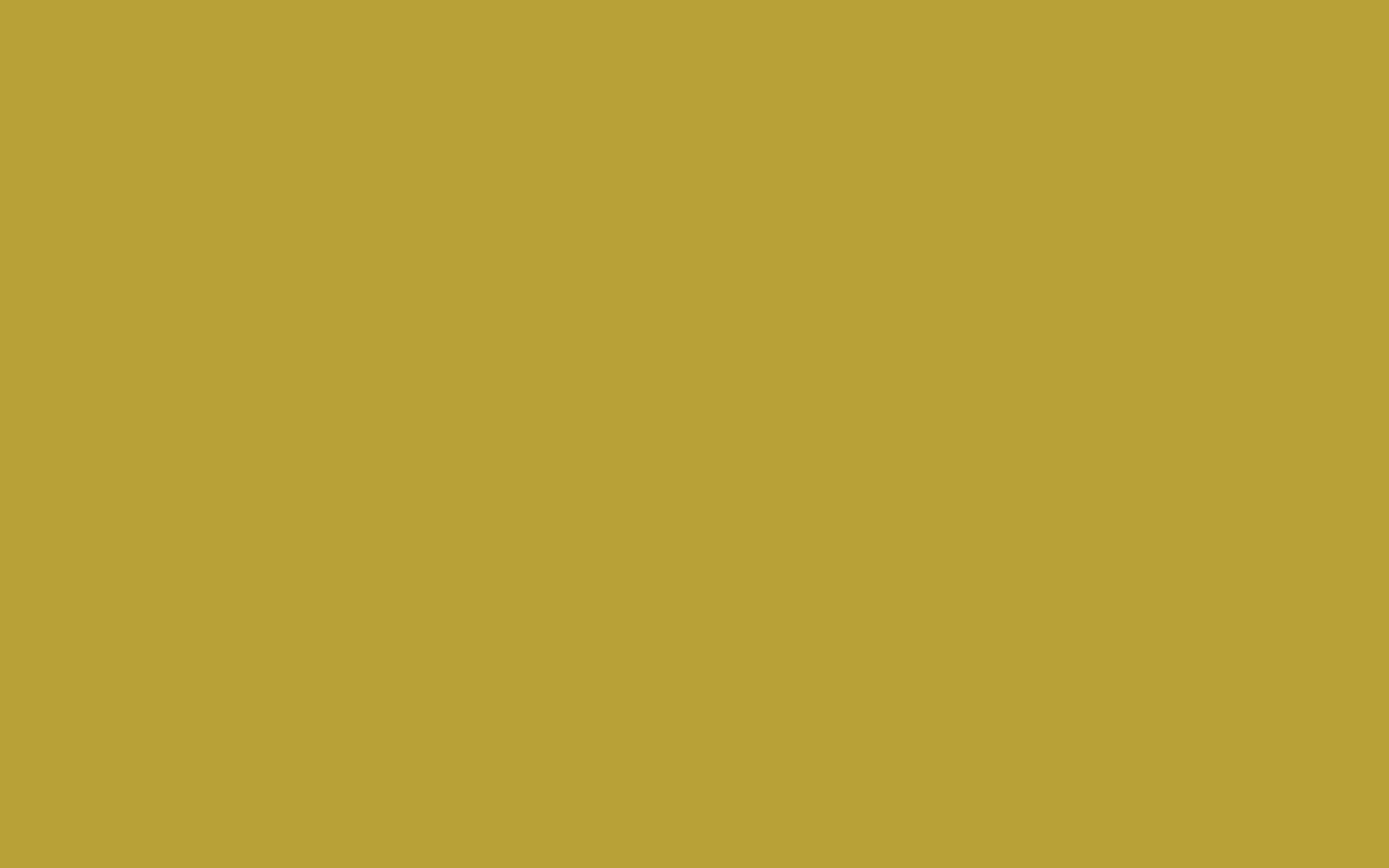 Das Olivgrün. Grüngelb oder gelbgrün? Ein Klassiker.
