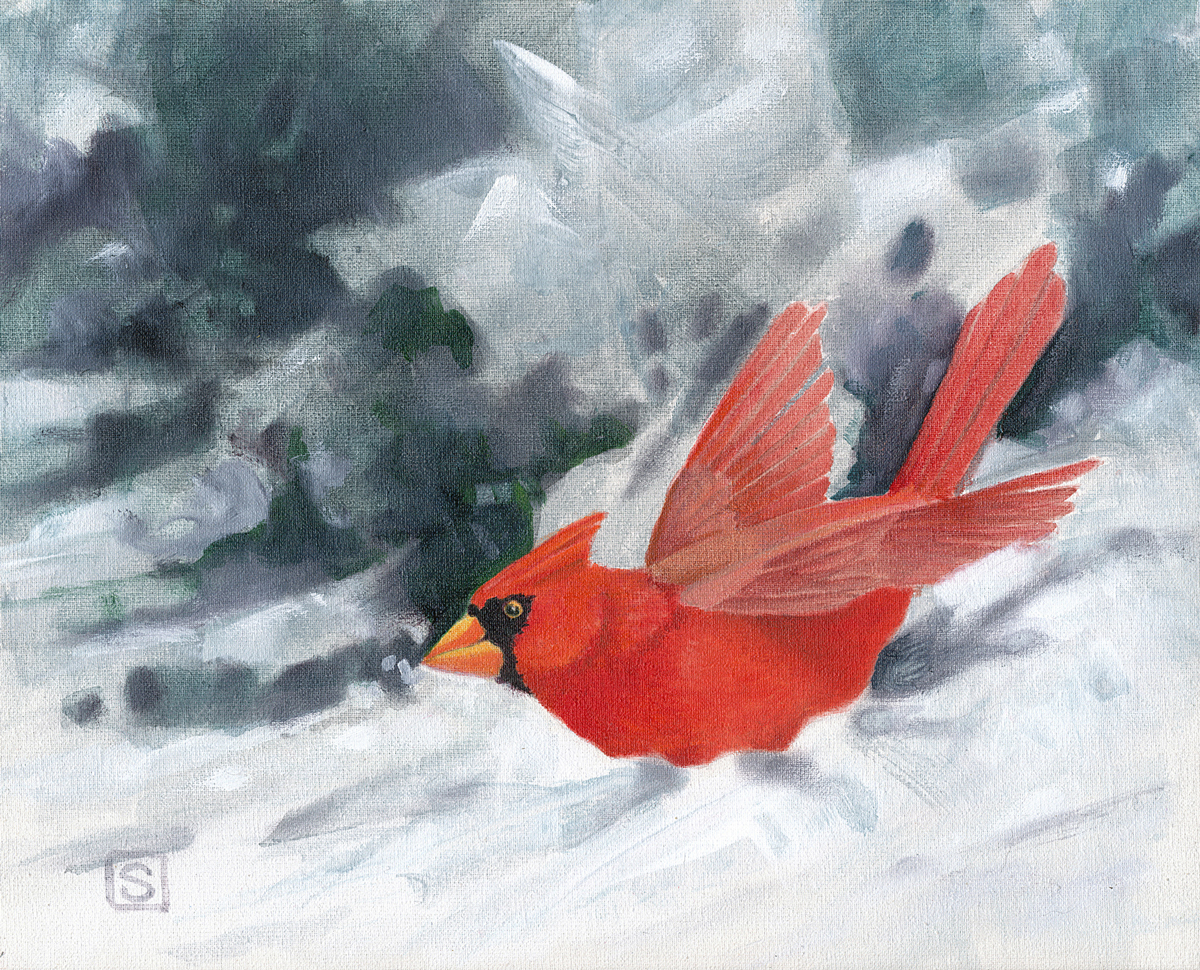 Cardinal in Ground