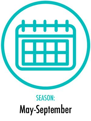 Season May - September