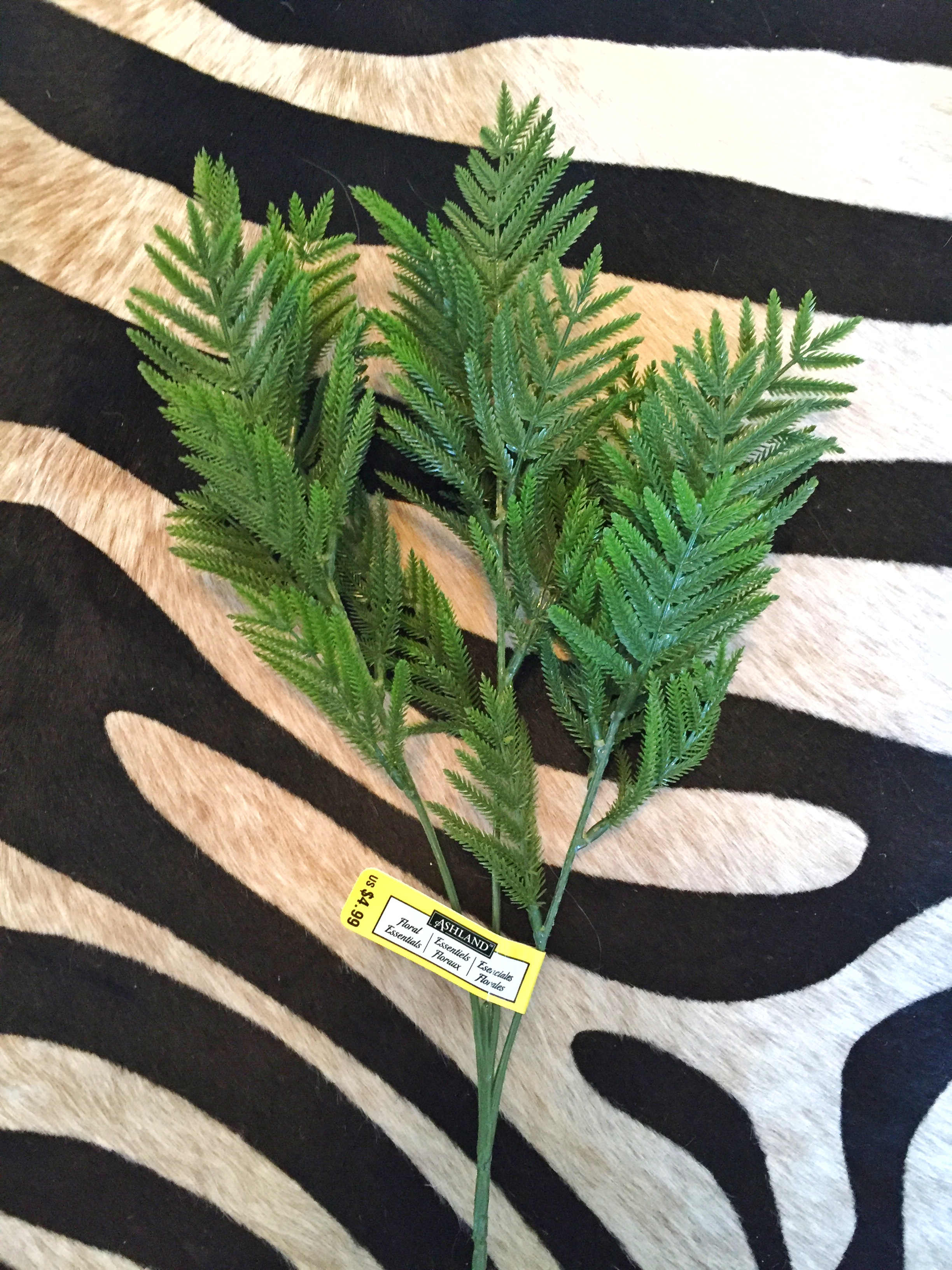 This fern bunch and washi tape were found at Michael's.