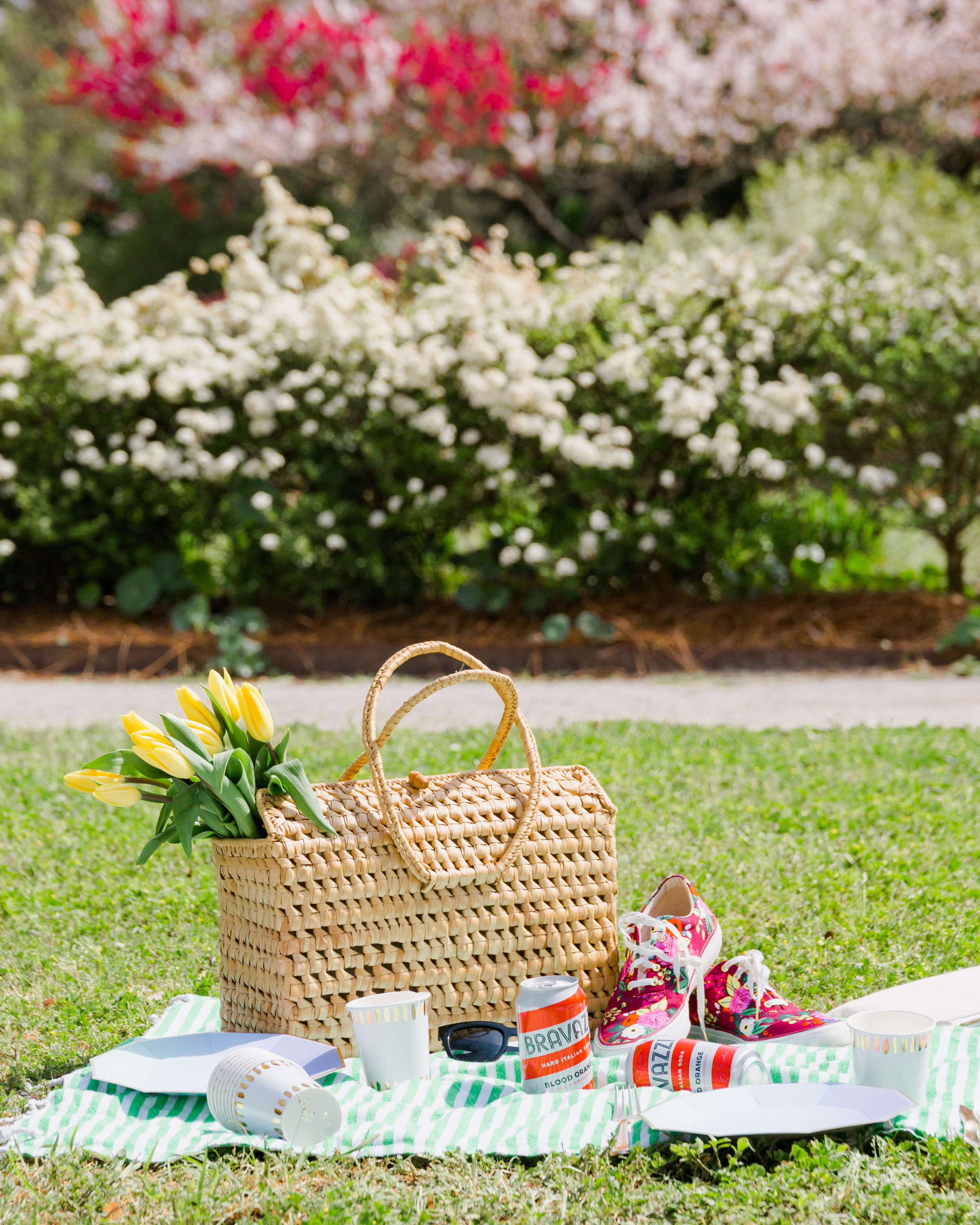 colorful charleston picnic