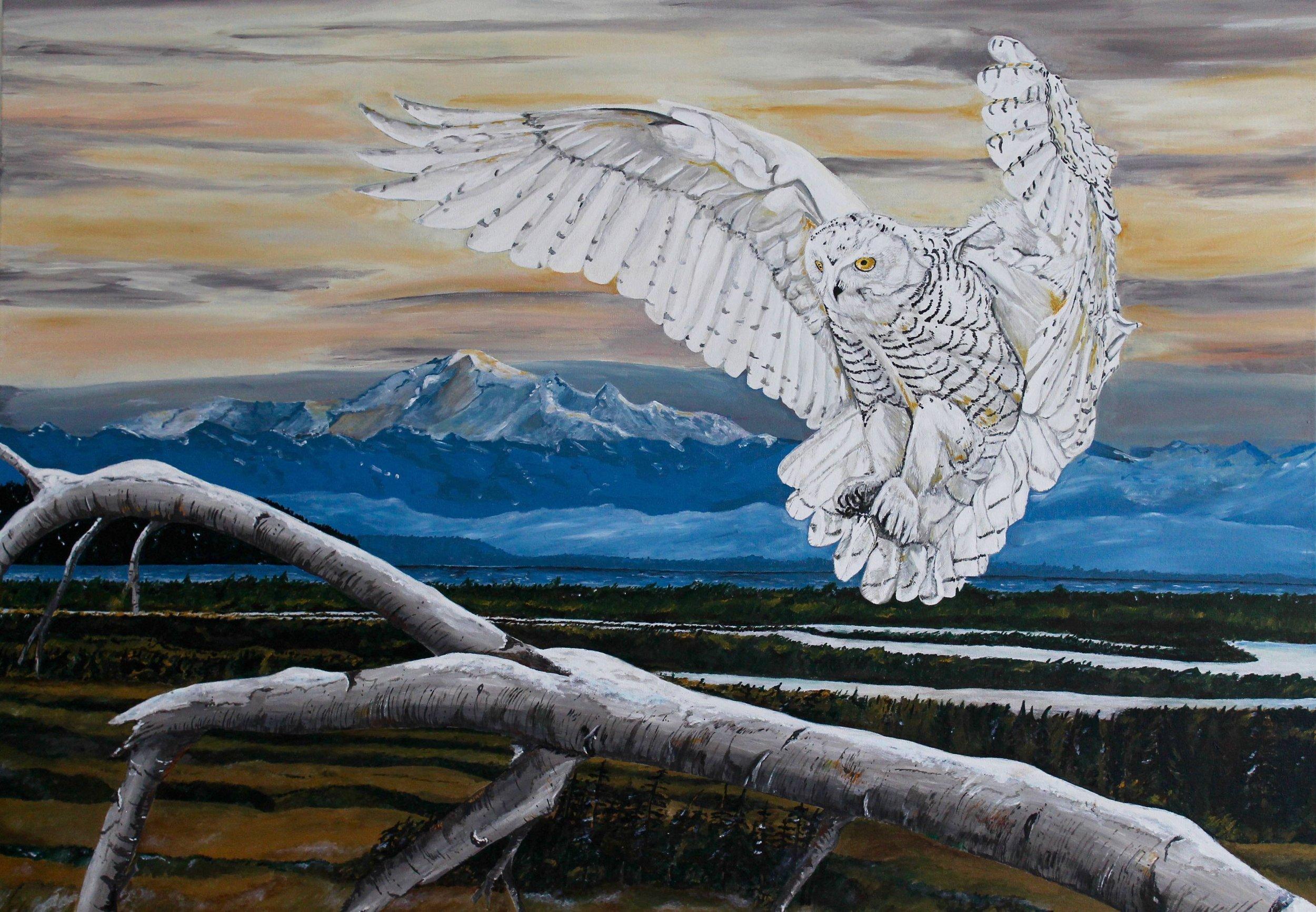 "Snowy Owl , Ettore Iannacito, 48"" x 36"", $1500 (free shipping, free returns, no additional fees!)"