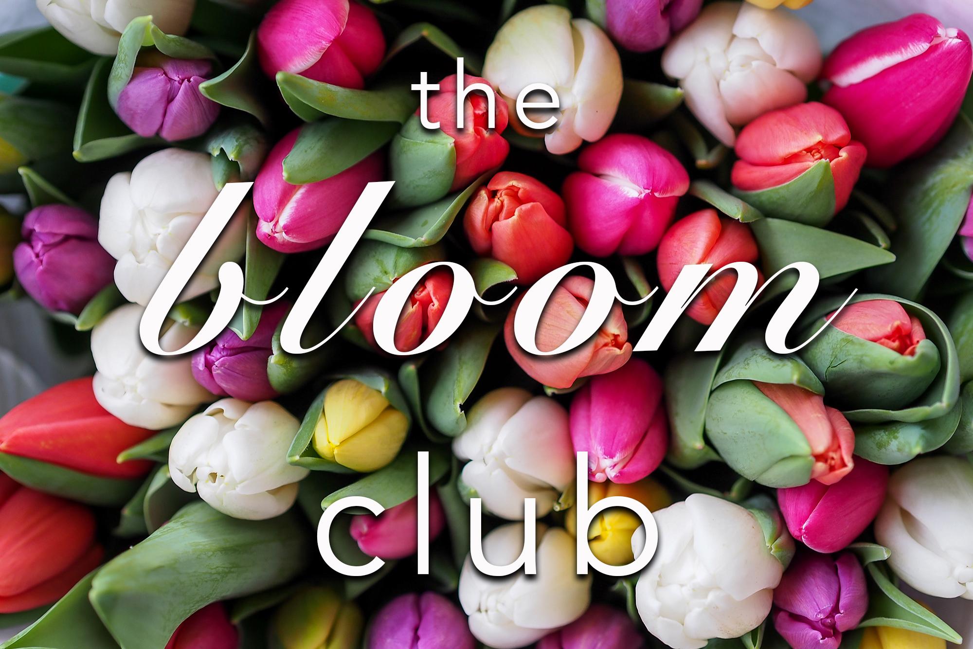 the bloom club_web banner.jpg