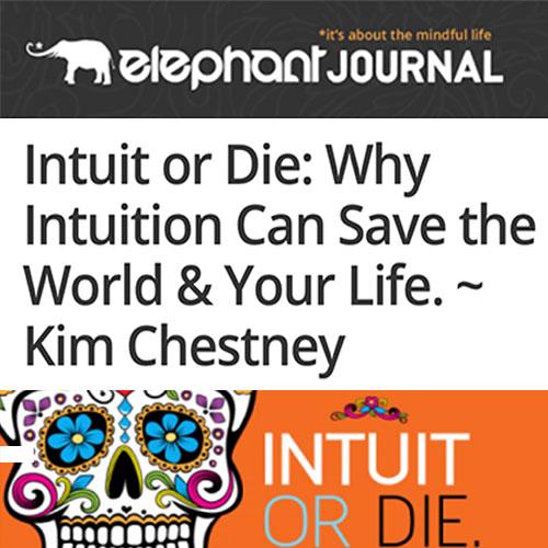 Infographic-Elephant-Kim-Chestney.jpg