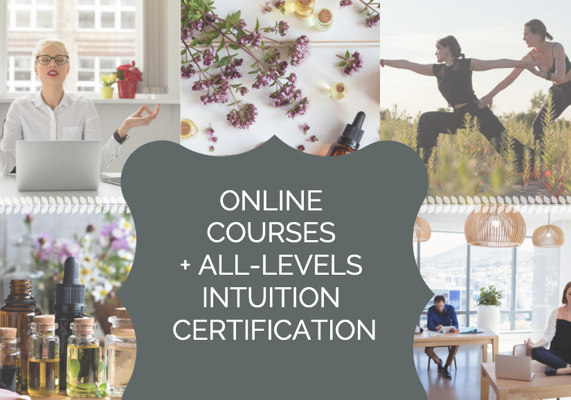 IntuitionLab Online Intuitive Development School