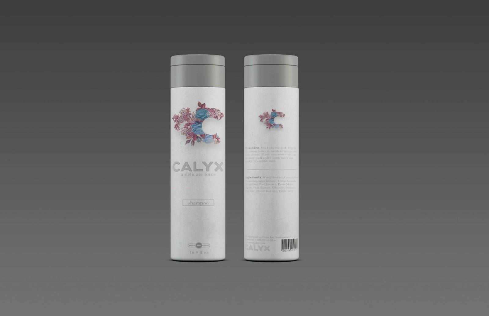Calyx Final Pres-04.jpg