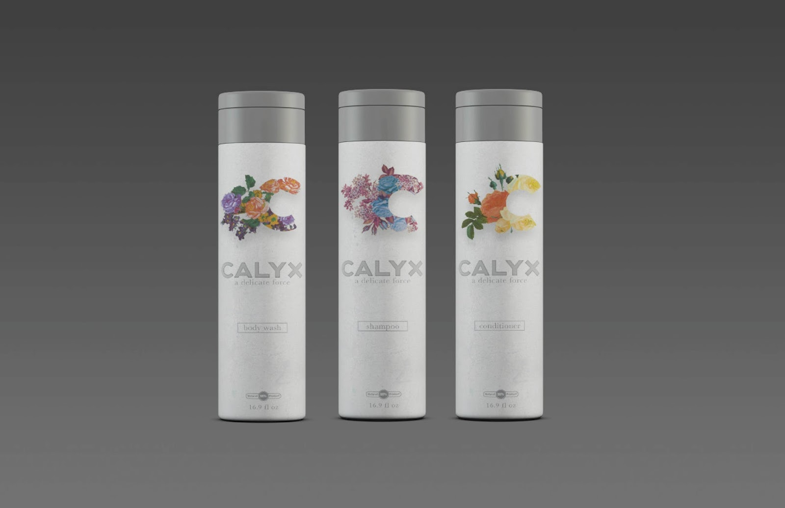 Calyx Final Pres-03.jpg