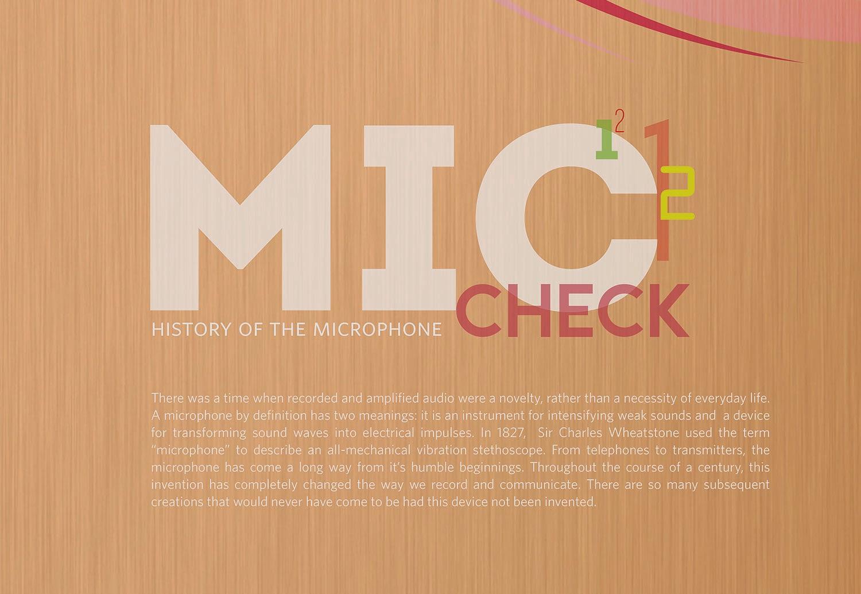 mictimeline_textkra.jpg