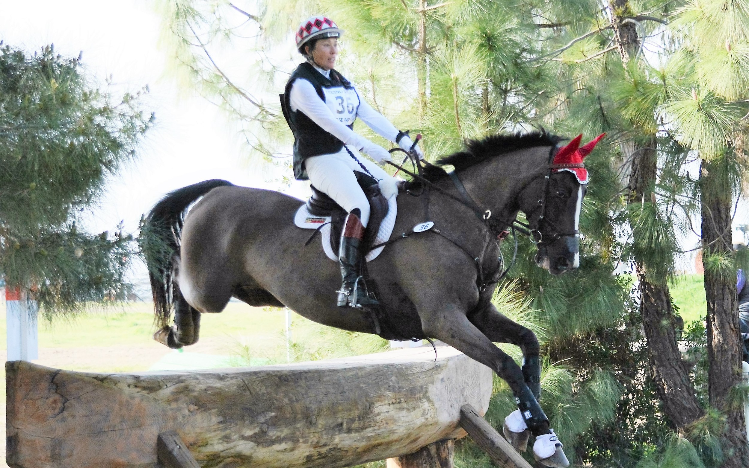 Jennifer McFall and High Times winning their first Advanced Horse Trials of 2016 at Fresno County Horse Park CIC and Horse Trials in February.