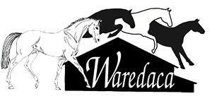 WAREDACA (2).png