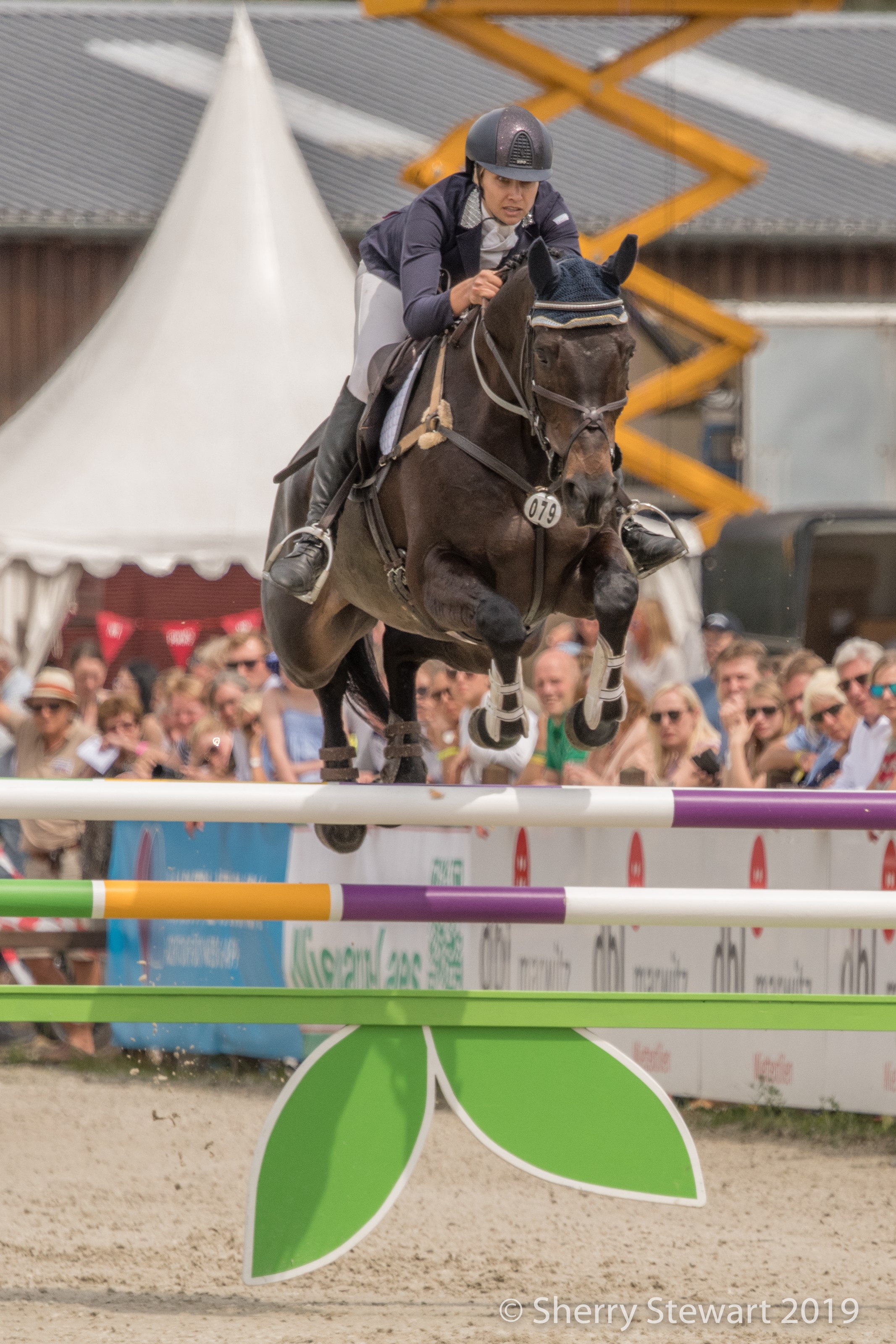 A clear round in show jumping saw Frankie and Chat finish in 4th place and get their first 5* under their belts.