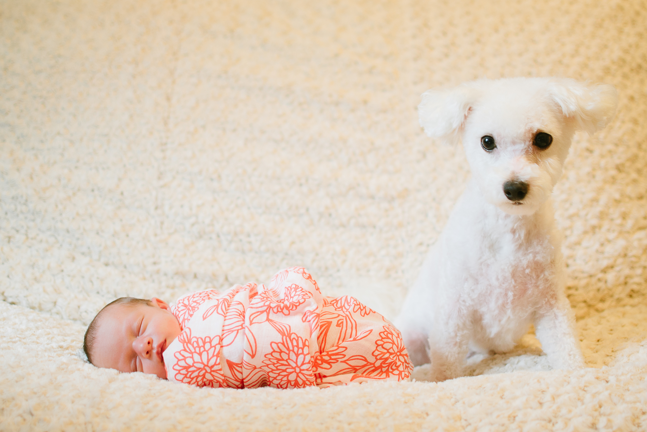Megan Fuss Photography Newborn Baby Riley 00009.jpg