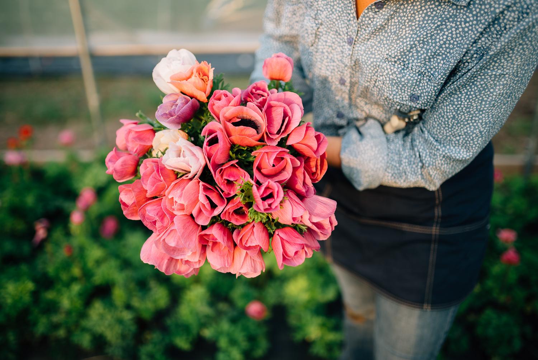 2016-05-12 Rooted Flowers 00163.jpg