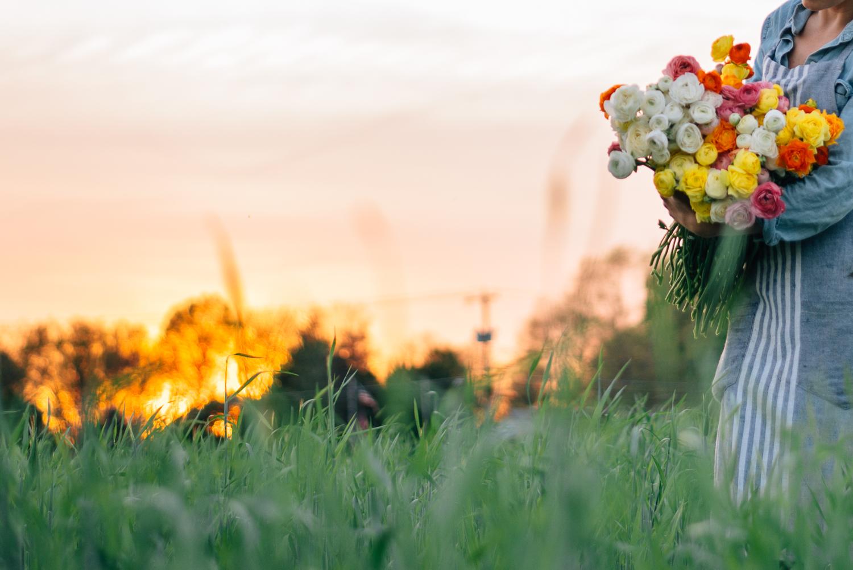 2016-05-12 Rooted Flowers 00561.jpg
