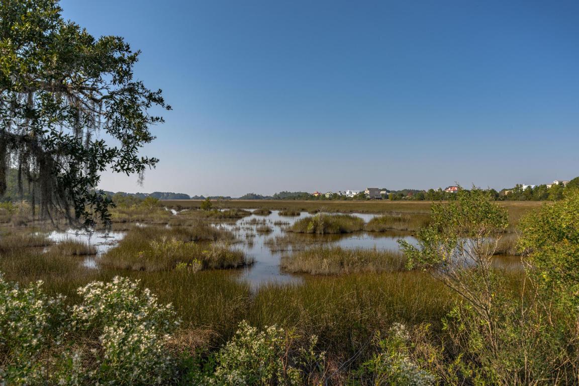 Marsh Lands @ Rushland.jpg
