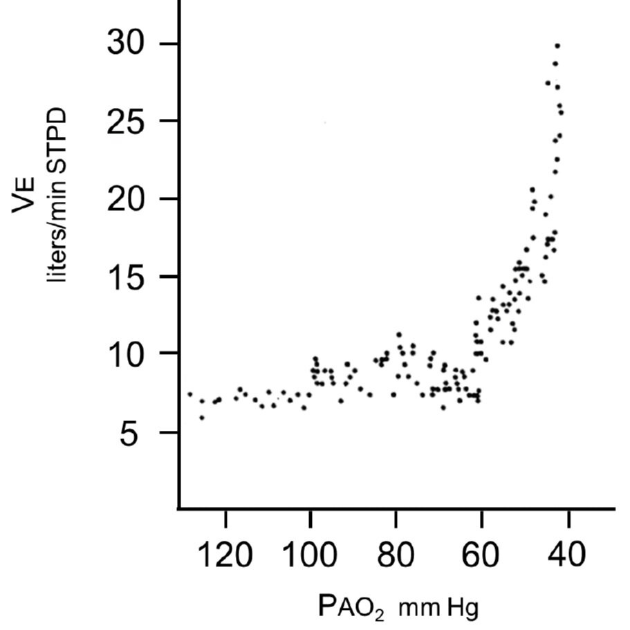 From cited article - Figure 1. PaO2 <60 marked increase minute ventilation