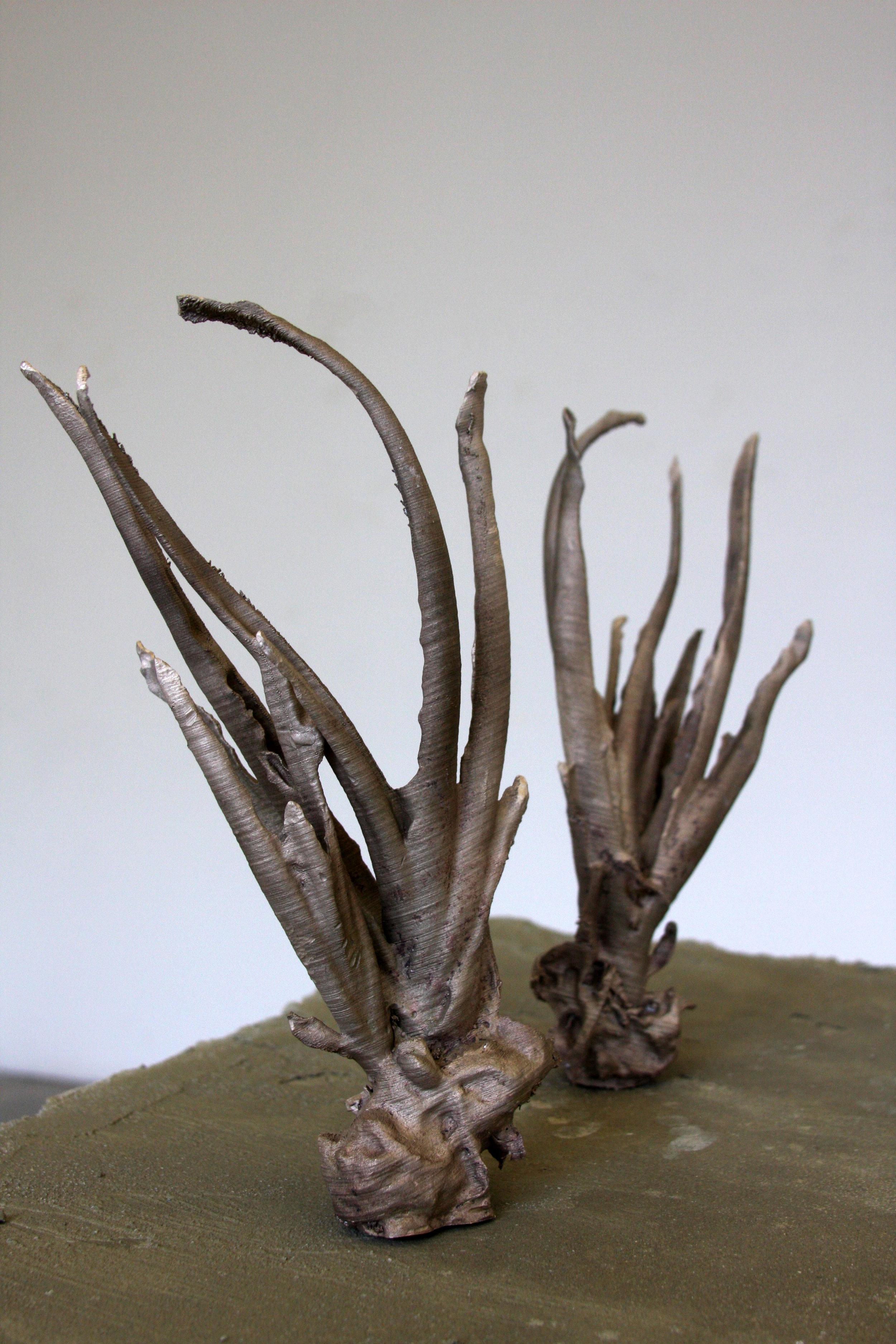 cast bronze aloe vera from 3D prints